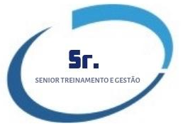 SENIOR GESTÃO